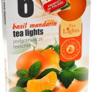 Tealight bosiljak -mandarina sveće 6 kom.